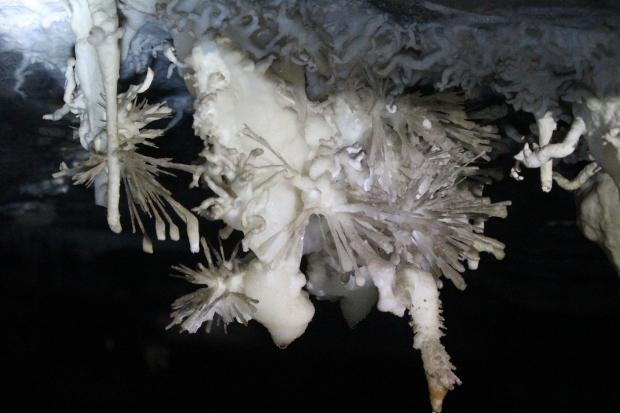 Gruta da Torrinha: flores de aragonita nas pontas de helictites, agulhas de gipsita, bolhas de calcita, vulcões e a rara flor de aragonita dentro da bolha de calcita.